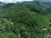 血战文塘:红三十四师湘江边最惨烈的恶仗