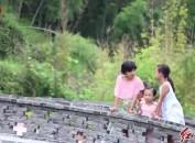 新罗:国庆长假游客青睐水乡古村短途