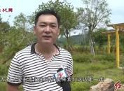 漳平:多措并舉整治農村環境  助推鄉村振興