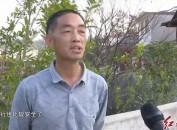 上杭才溪:主題教育在實踐 民生工作看落實