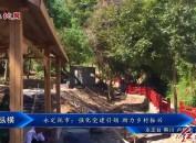 永定撫市:強化黨建引領 助力鄉村振興