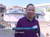漳平西園:推進高鐵沿線環境整治 打造靚麗風景線