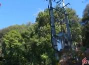 永定供电:靠前服务当先锋 乡村振兴有电能