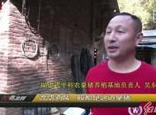 吴东明:深山养豪猪 开启致富路
