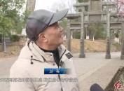 连城培田:古村落梅花盛开 暗香浮动醉游人