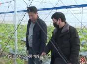 漳平:疫情防控不松懈 春耕生产有保障