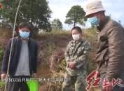 新罗:严把春季植树造林质量关