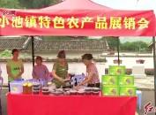 新罗小池举办文化旅游节
