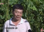 2020年8月30日闽西党旗红