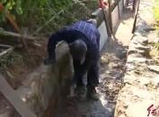 武平岩前:投资800万元改造重点重型灌区节水设施 有效灌溉下游14000亩农田
