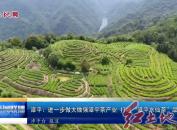 """漳平:进一步做大做强漳平茶产业 打响""""漳平水仙茶""""品牌"""