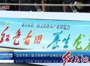 龙岩市第二届文旅康养产业博览会在会展中心开幕