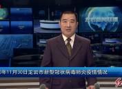 2020年11月30日龍巖市新型冠狀病毒肺炎疫情情況