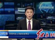市领导赴上海参加进博会