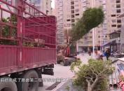 漳平:加快推进福满路道路工程项目施工