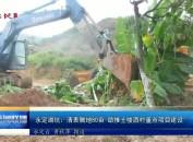 永定湖坑:清表腾地80亩 助推土楼酒村重点项目建设