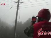 武平供电:开展线路特巡 除覆冰保供电