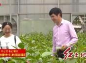 上杭:发挥优势兴产业美乡村 打造特色乡村振兴之路
