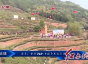 漳平:举办2021年漳平水仙茶开采节