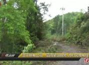 武平供电公司:冒雨紧急抢修为村民用电保驾护航