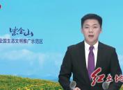 永定抚市:党建引领乡村振兴有支撑