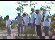 龍巖黨史學習教育進行時?系列視頻28 綠夢成真