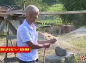 连城北团石丰村:兴产业提升风貌 绘乡村振兴画卷
