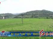 """推广农业""""五新""""技术  帮助农民增收农业增效"""