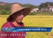 上杭:万亩晚稻开镰收割 机械化省工省力