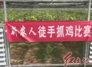 """长汀河田:首届""""新农人""""葡萄文化旅游节举行 游客体验独特的""""葡萄+文化""""之旅"""