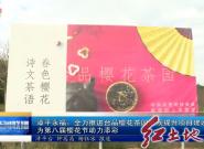 漳平永福:全力推进台品樱花茶园景观提升项目建设 为第八届樱花节助力添彩