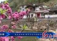 風光美如畫 新羅萬安鄉村游受青睞