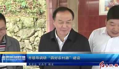 """市领导调研""""四好农村路""""建设"""