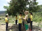 开心!龙岩市特校孩子们的农场体验活动