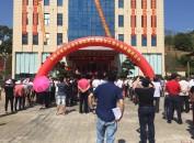 张松涛书画院成立及揭牌仪式在龙岩市永定区坎市镇新罗村举行