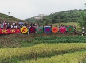 福建省龙岩市永定区陈东举办2020年农民丰收节