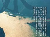 联播+丨建设人与自然和谐共生的美丽中国 习近平这样擘画