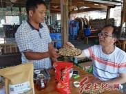到连城培田古民民,品红茶瞌白葵花籽休闲