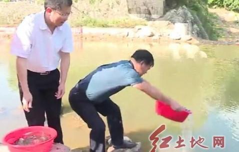 連城縣朋口鎮投放30余萬尾濾食性魚苗清潔水域
