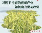 新闻多一点 | 习近平考察的黄花产业,如何助力脱贫攻坚