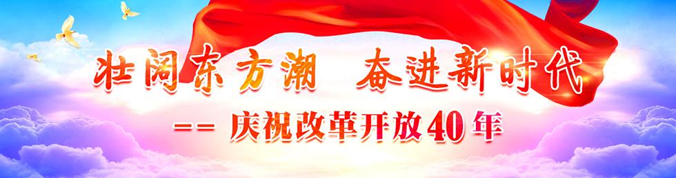 壮阔东方潮,奋进新时代  庆祝改革开放40年
