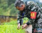 貴州赤水:竹海護林員的奉獻與守望