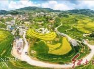 龙岩市永定区陈东岩太丰收节(YOYO  摄影)